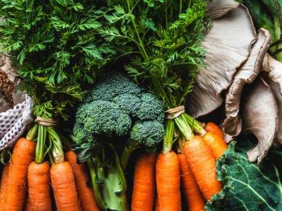 Vegan Beslenen Vücut Geliştirme Sporcular İçin En İyi Besinler